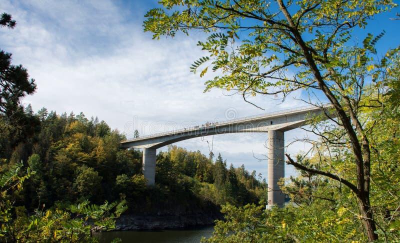 Most nad rzeką używany do skoków fotografia royalty free