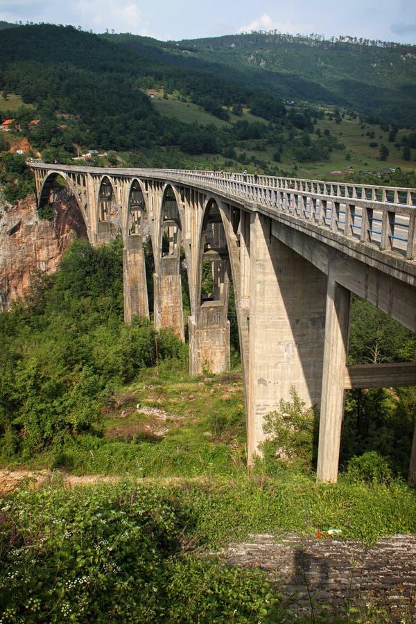 Most nad Tara zdjęcia royalty free