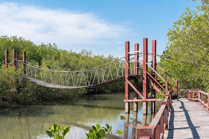 most nad wodą skołataną zdjęcie stock