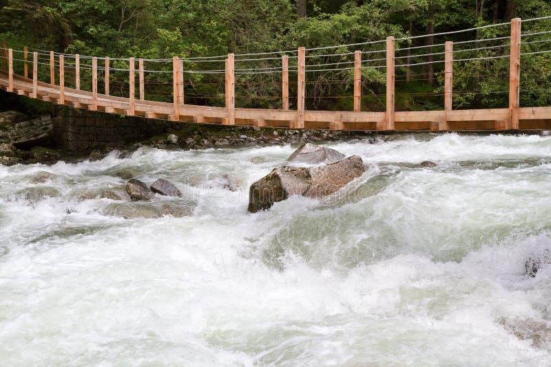 most nad wody drewnianym dziki zdjęcie royalty free