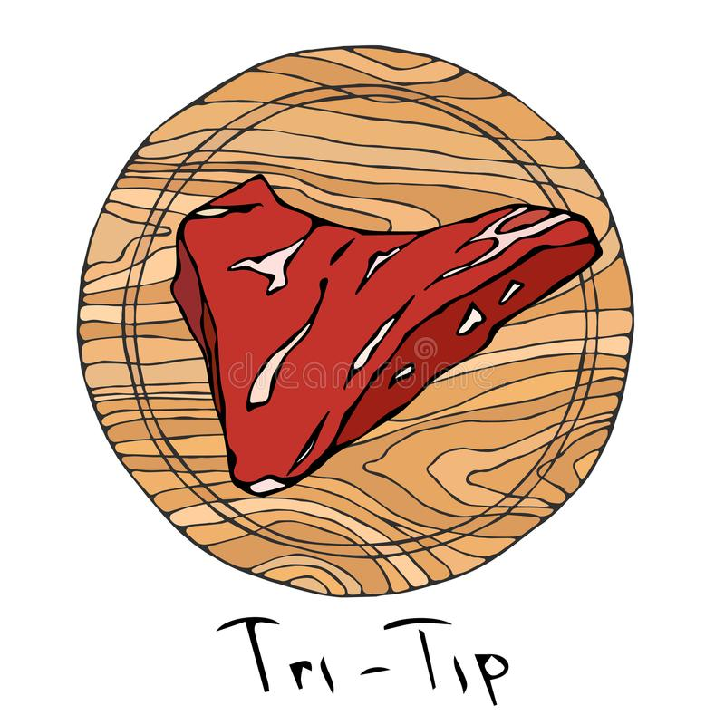 Most Popular Steak Tri-Tip on a Round Wooden Cutting Board. Beef Cut. Meat Guide for Butcher Shop or Steak House Restaurant Menu. Hand Drawn Illustration vector illustration