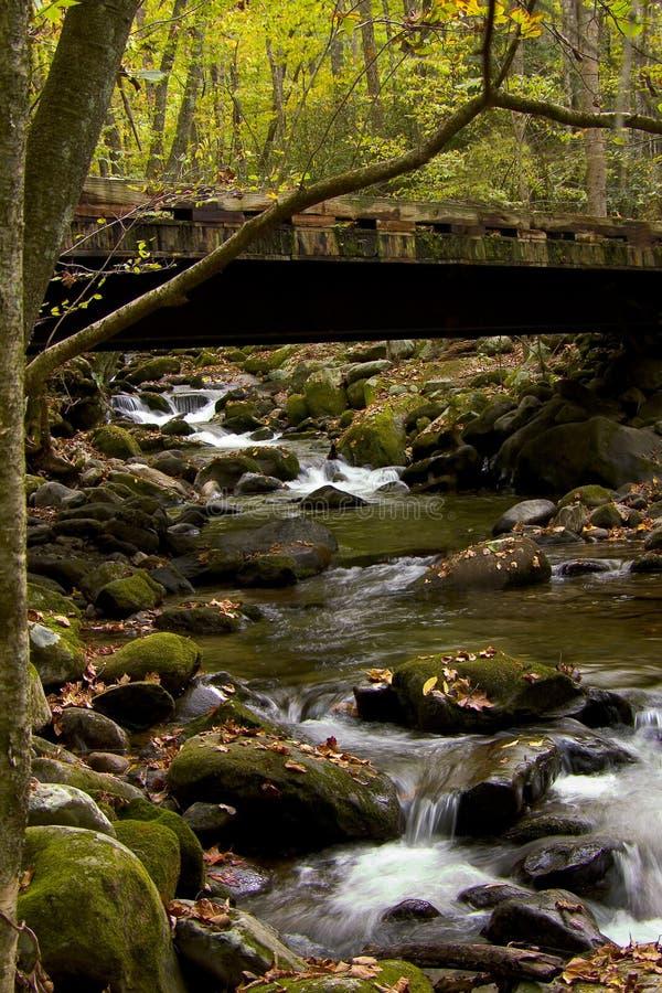 Download Most rozwidla ryczący obraz stock. Obraz złożonej z strumień - 128705
