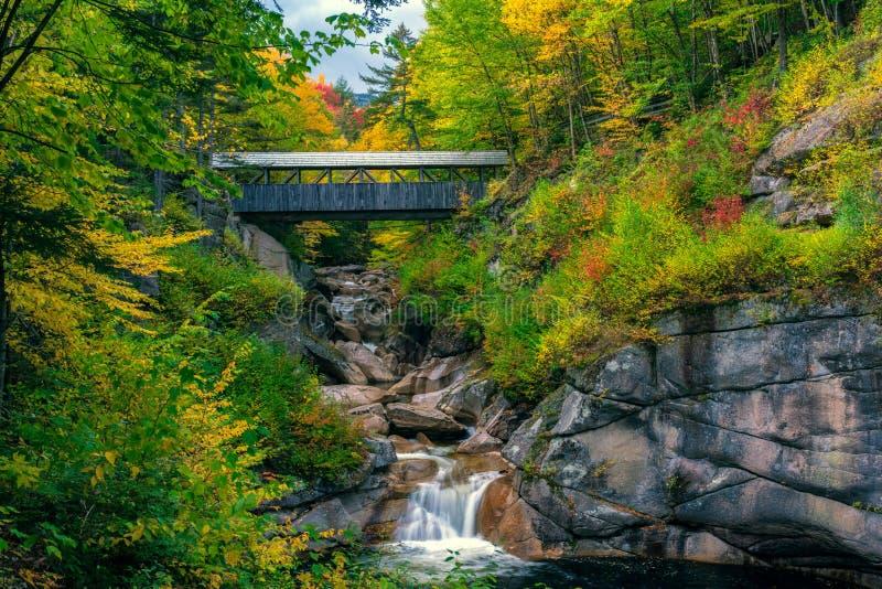 Most Sentinel Pine, niedaleko Lincoln, New Hampshire, jesień obraz royalty free