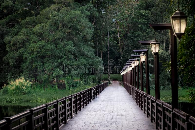 Most w Ang Kaew w Chiang mai uniwersytecie, Tajlandia obraz stock