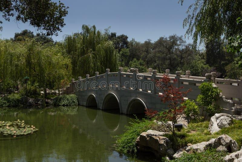 Most w Chińskim ogródzie botanicznym obrazy royalty free