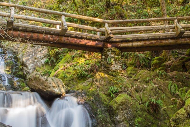 Most w drewnach zdjęcie royalty free
