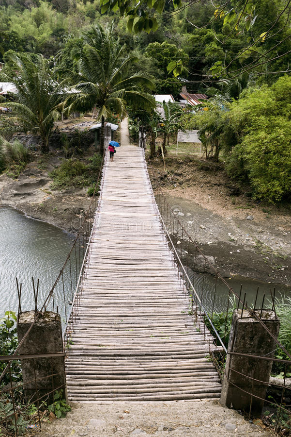 Most w naturze obrazy stock
