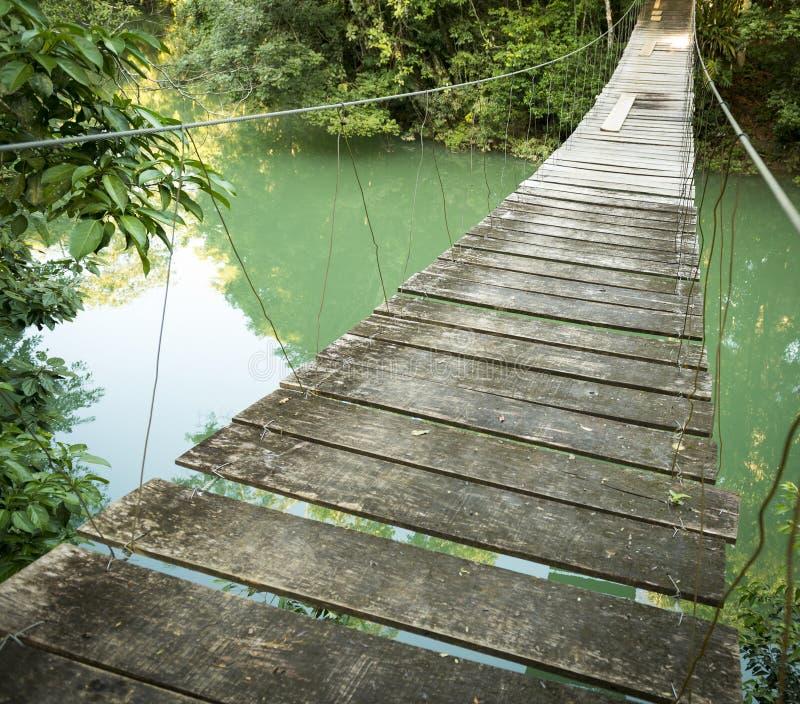 Most W Rio Blanco parku narodowym Belize obrazy royalty free