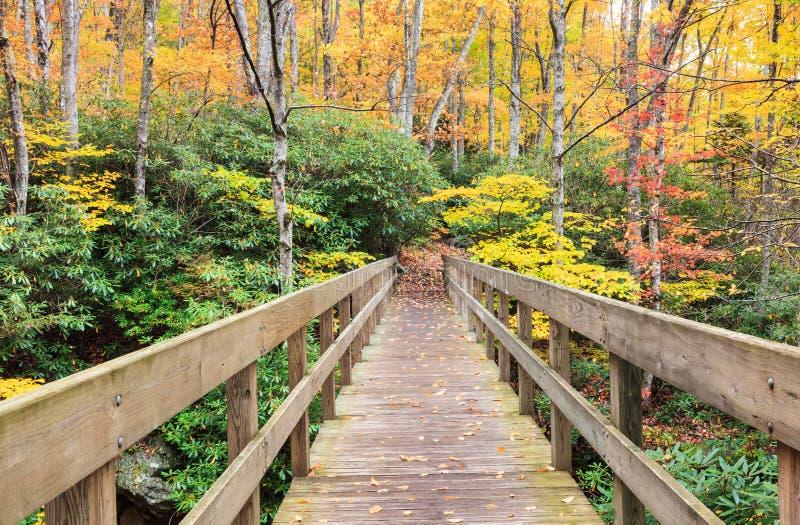 Most wzdłuż Tanawha śladu w Pólnocna Karolina obrazy royalty free