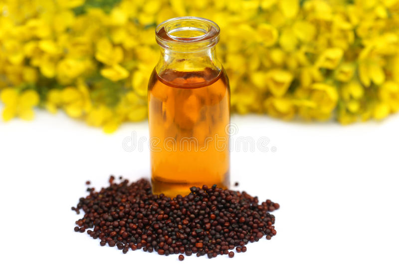 Mostaza con aceite y la flor foto de archivo libre de regalías