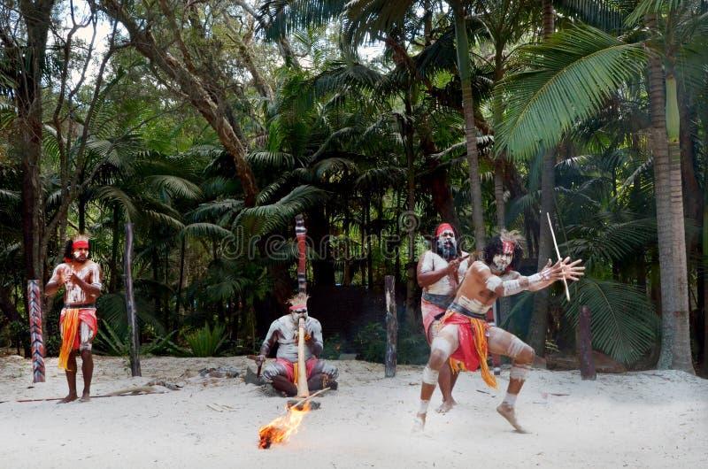 Mostra aborígene da cultura em Queensland Austrália fotos de stock