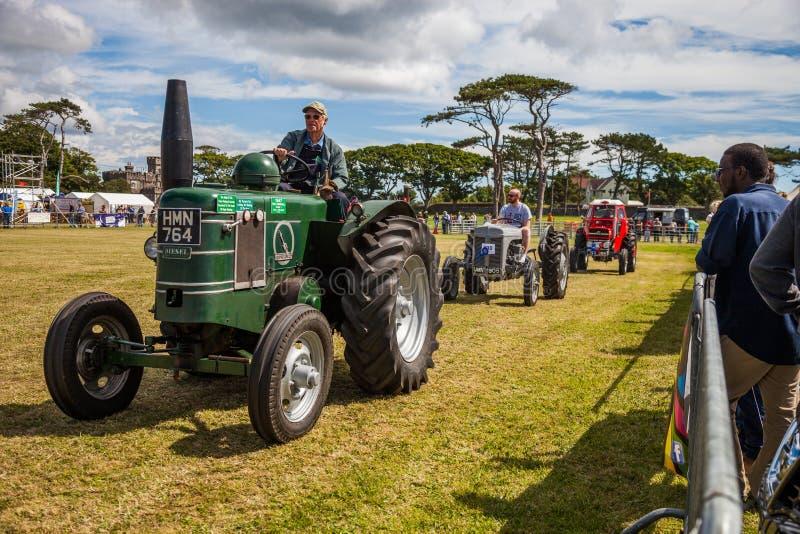 Mostra agrícola foto de stock
