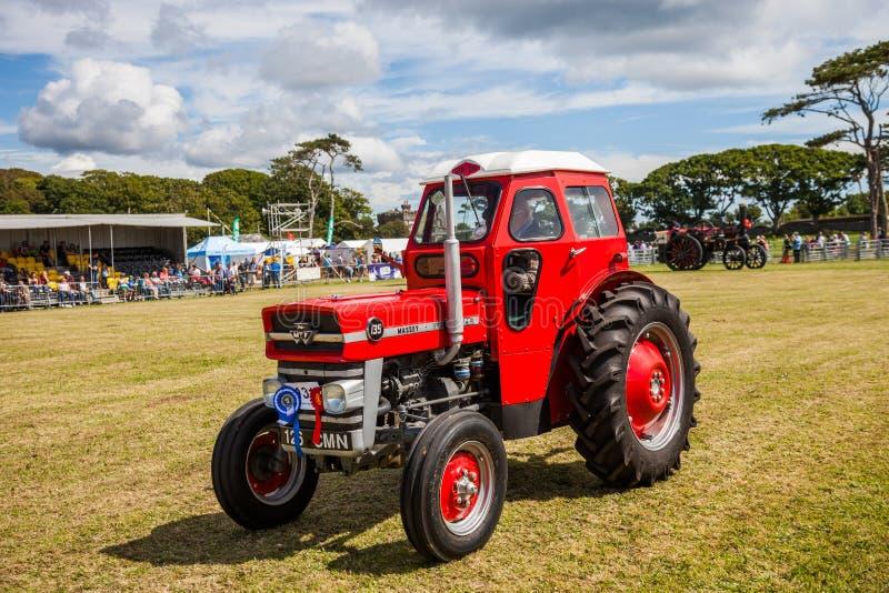 Mostra agrícola fotos de stock royalty free