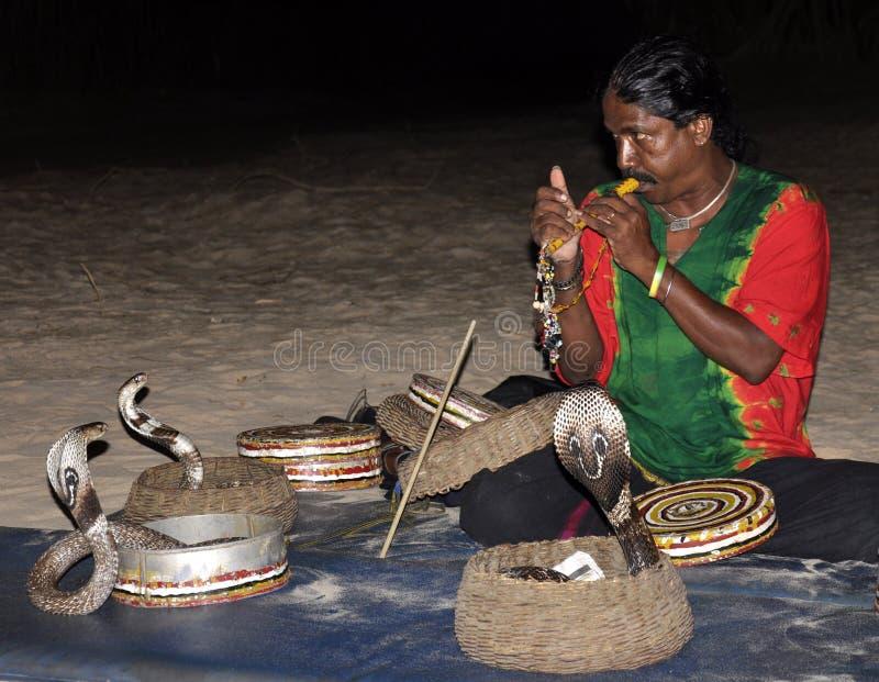 Mostra da serpente em Sri Lanka fotografia de stock