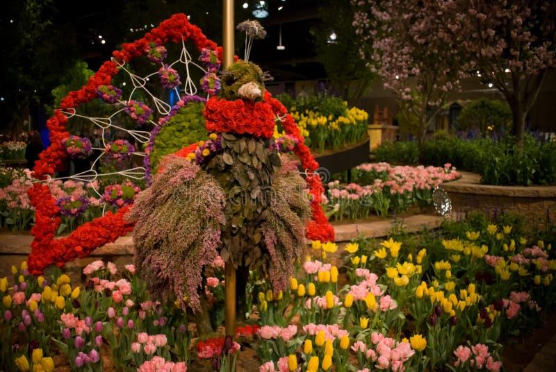 Mostra de flor de Turquia fotografia de stock royalty free