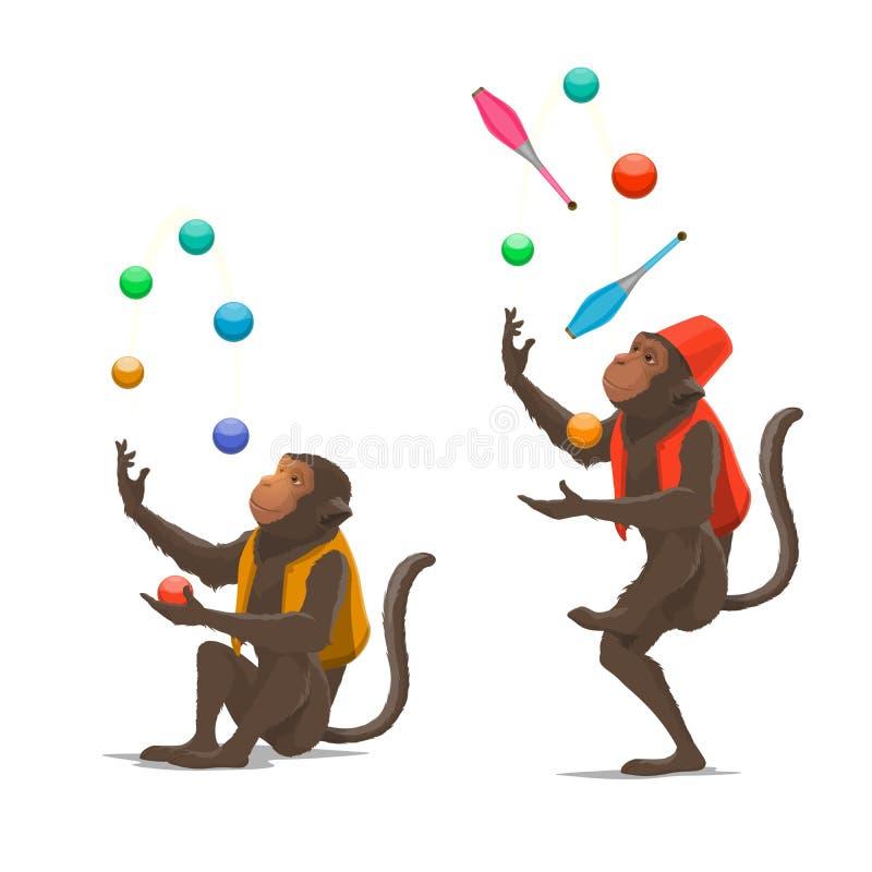 A mostra do circo treinou os macacos que manipulam bolas, macis ilustração stock