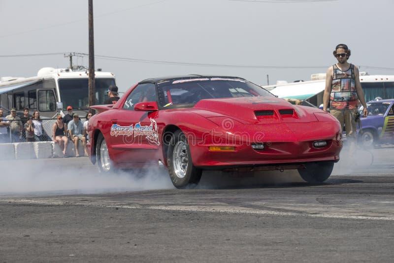 Mostra do fumo de Firebird fotos de stock royalty free