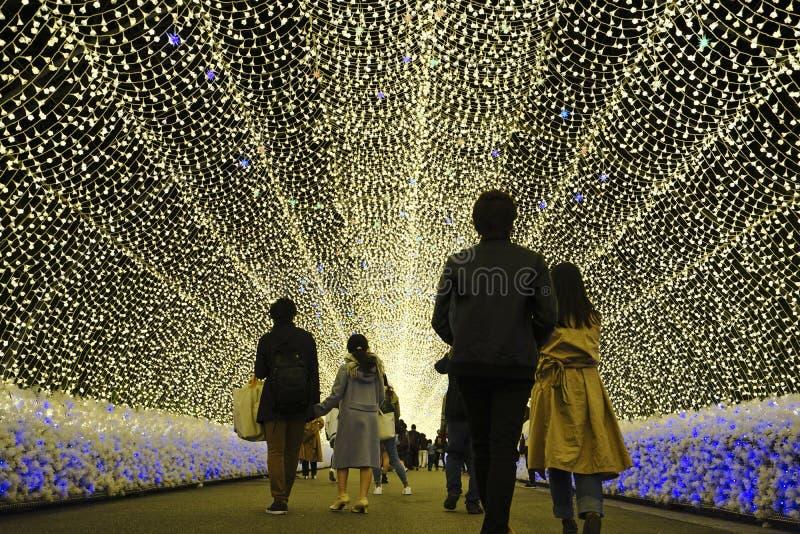 Mostra do túnel da iluminação da luz do inverno foto de stock royalty free