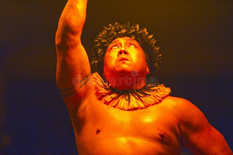 Mostra havaiana da dança e do fogo de Luau imagens de stock royalty free