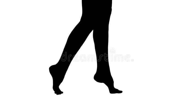 Mostre em silhueta os pés fêmeas bonitos que andam elegantemente no dedo do pé da ponta ilustração do vetor
