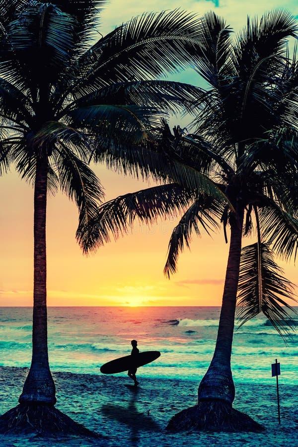 Mostre em silhueta a palmeira do coco e alguns povos na praia da areia imagens de stock royalty free