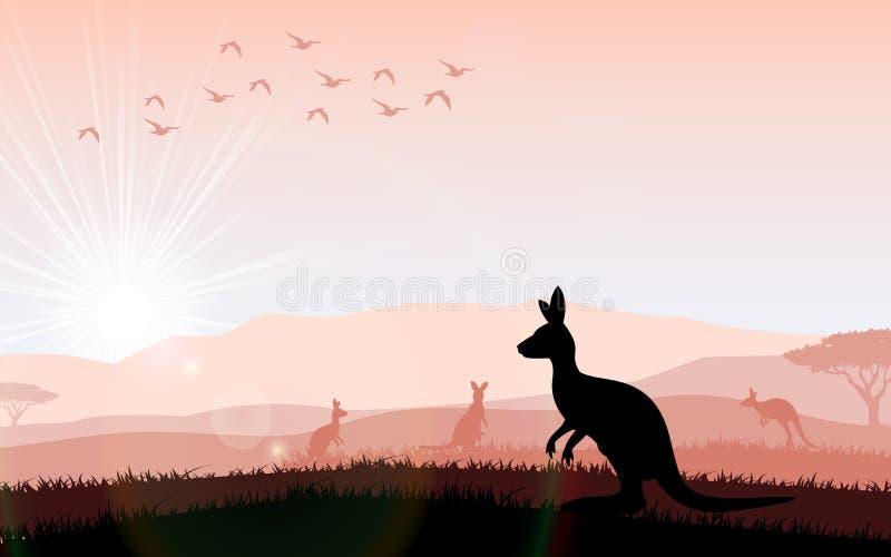 Mostre em silhueta um canguru a alimentação no por do sol brilhante ilustração stock
