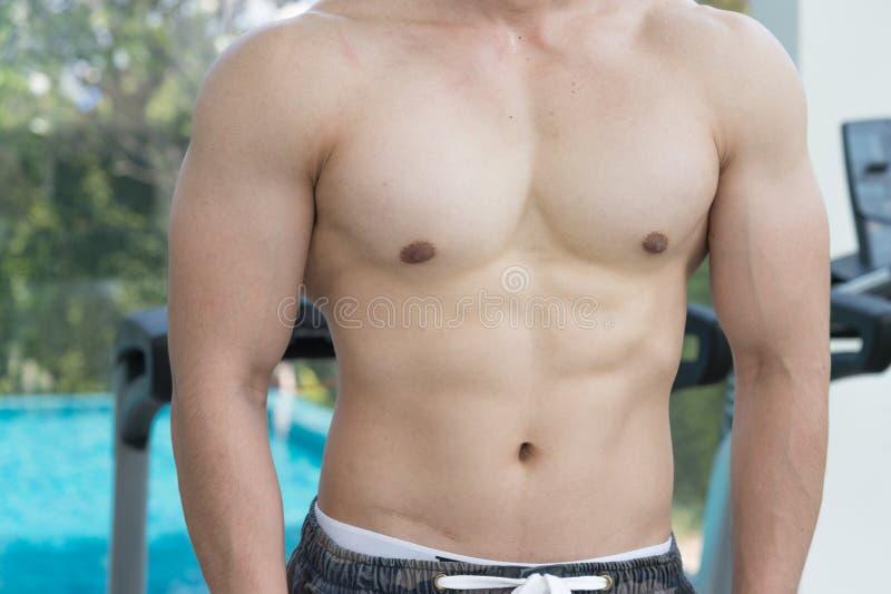 Mostre o corpo dos músculos do homem considerável no gym ou no fitness center foto de stock royalty free