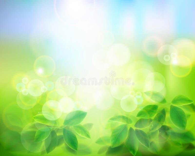 mot bakgrund field blåa oklarheter för grön vitt wispy natursky för gräs också vektor för coreldrawillustration vektor illustrationer