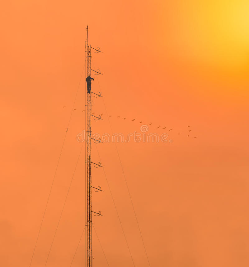mot den blåa kommunikationsskyen för antenner arkivbild