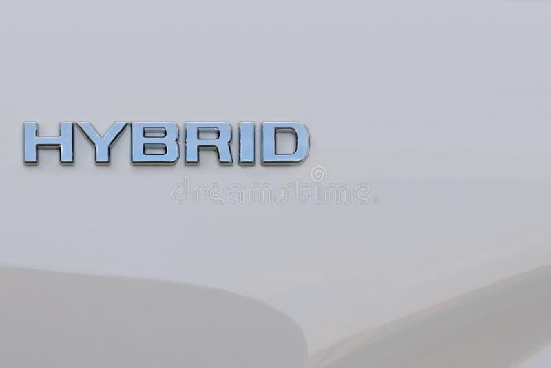 Mot hybride sur le fond blanc image libre de droits