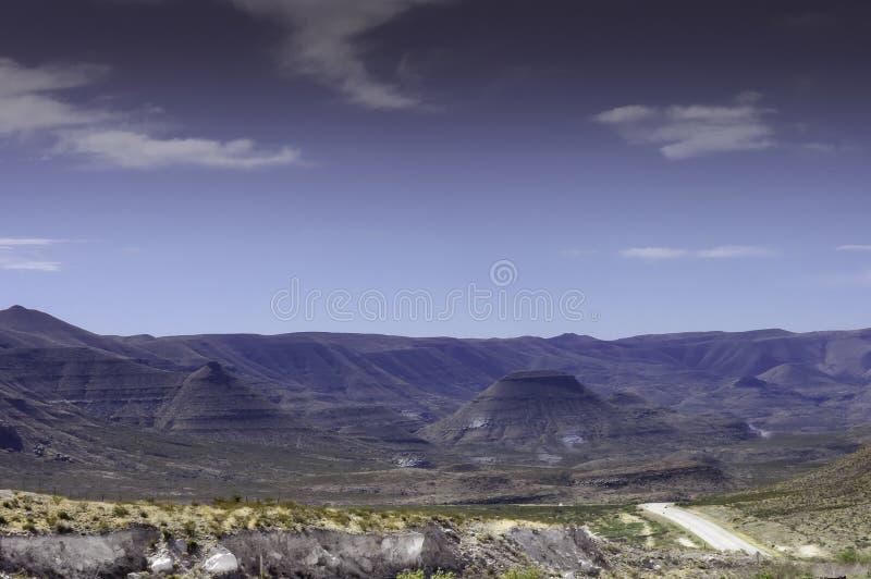 Motas púrpuras en Guadalupe Mountains National Parks fotografía de archivo libre de regalías