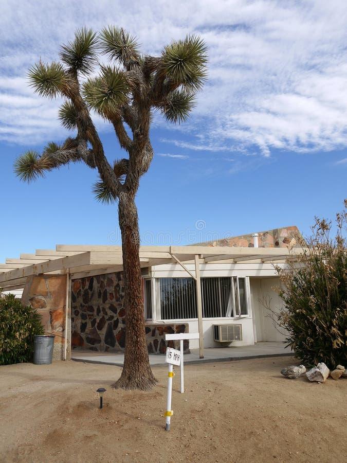 motel de los años 50: Árbol de Joshua foto de archivo