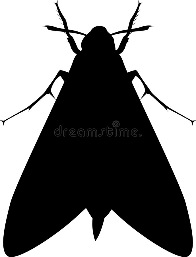 Moth insect silhouette. Illustration on silhouette of creeping and crawling insects on white background royalty free illustration