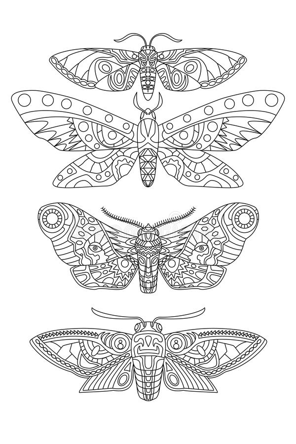 Moth Tattoo Line Drawing stock illustration. Illustration ...