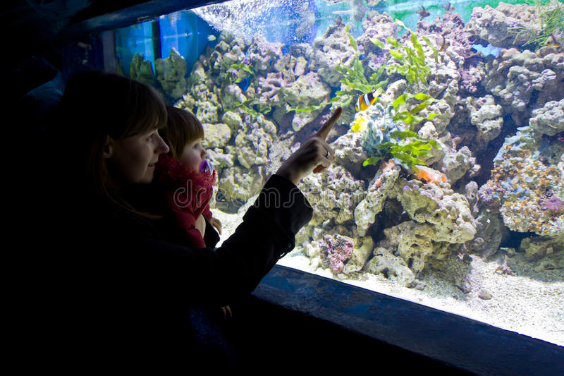 Mother and baby child looking fish. In aquarium royalty free stock photos