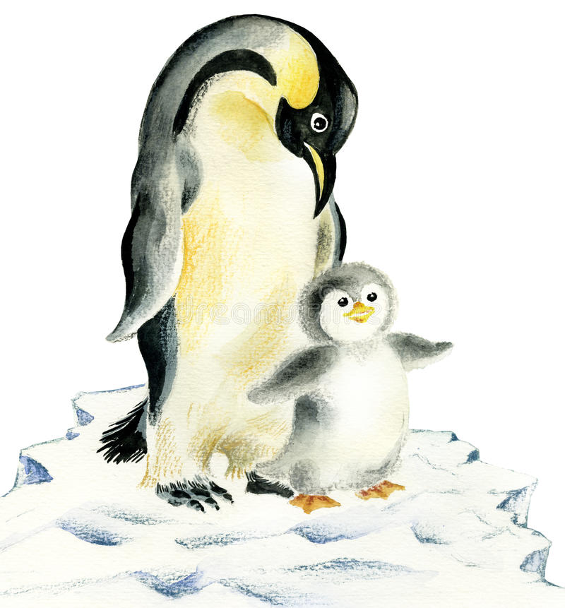 Excellent Mother and baby penguins stock illustration. Illustration of  RV57