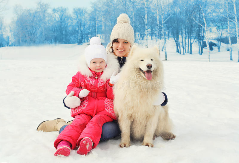 Mother and baby with white Samoyed dog together in winter royalty free stock images