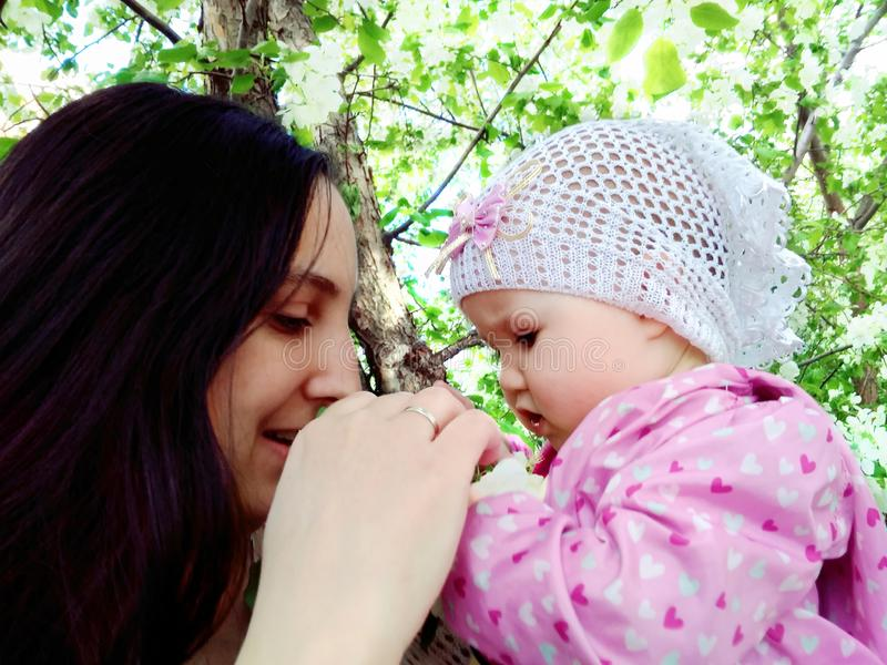 Mother and child in the flowers of Apple stock photo