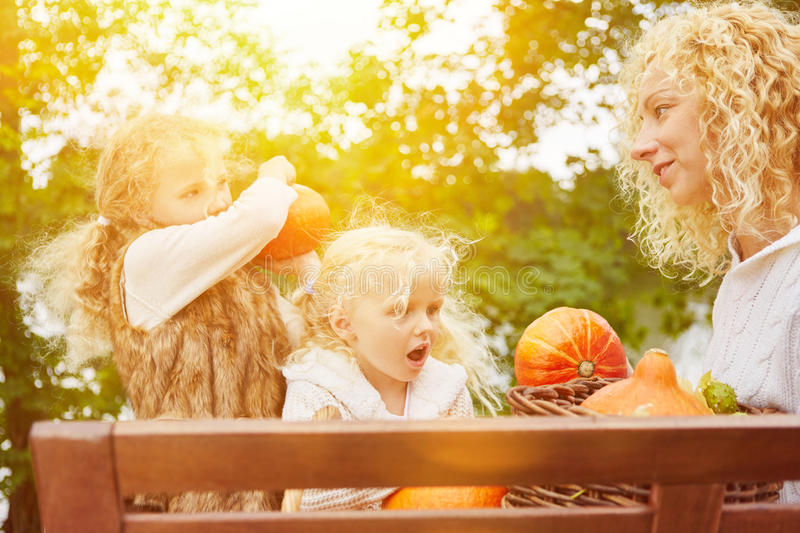 Mother and children harvesting pumpkins stock images