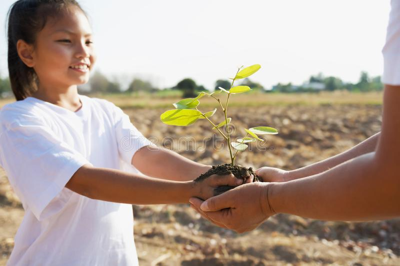 Mother and children helping planting young tree. Concept green world stock image