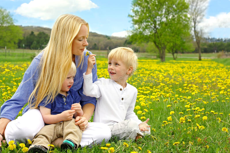 Mother and Children Sitting Outside in Dandelion Flower Meadow stock image