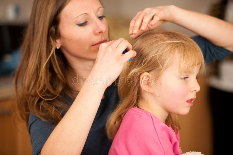 Mother combs hair to a little girl royalty free stock image