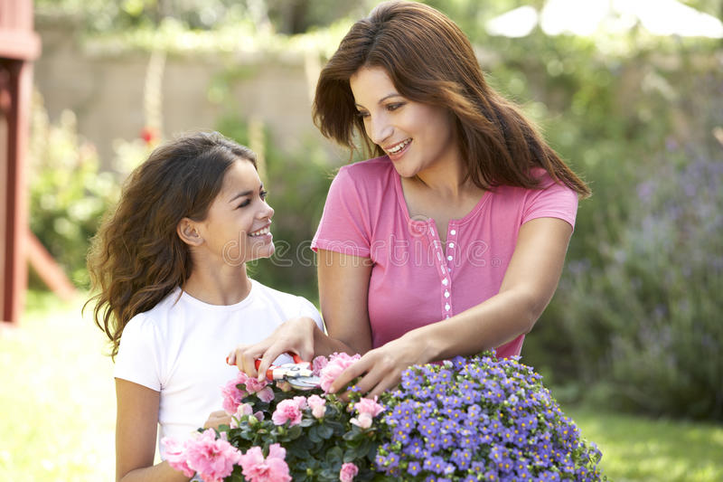 Download Mother And Daughter Gardening Together Stock Image - Image of hobby, secateurs: 12405747
