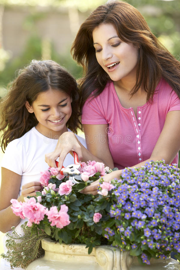 Download Mother And Daughter Gardening Together Stock Image - Image: 12405751