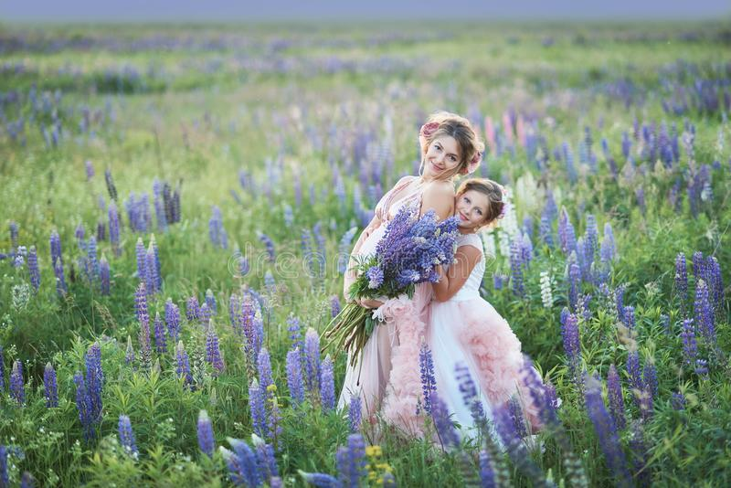 Mother and daughter gathering lupine flowers in beautiful field on sunset. Beautiful girl in violet dress holding a lupine at suns stock photo