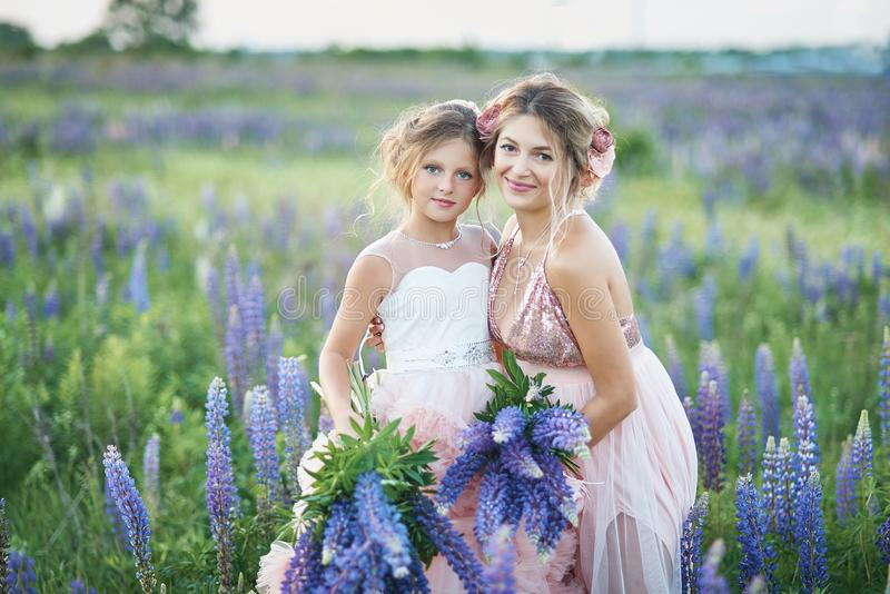 Mother and daughter gathering lupine flowers in beautiful field on sunset. Beautiful girl in violet dress holding a lupine at suns stock photos