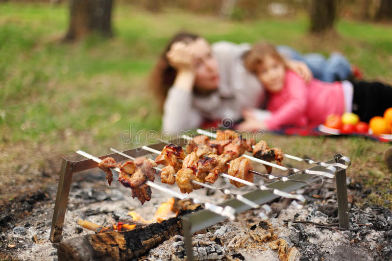 Download Mother And Daughter Lie Near Campfire With Grill Stock Photo - Image: 23997260