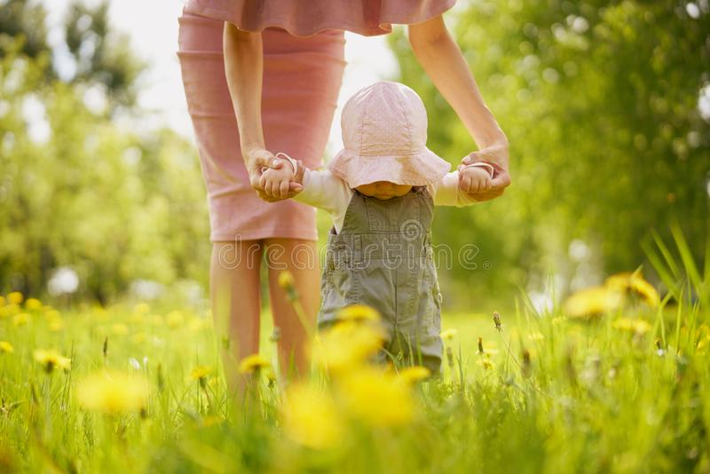 Mother and daughter on a meadow with dandelions stock images