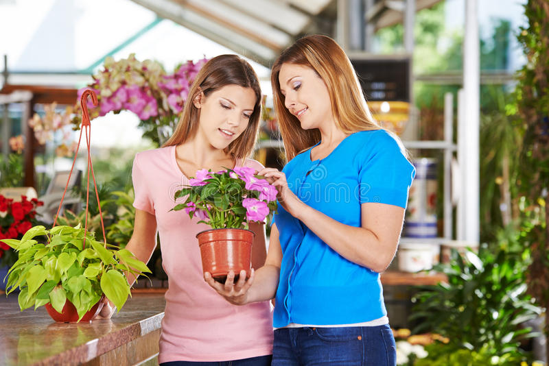 Mother and daughter with plants in nursery shop. Mother and daughter buying a plant (philodendron) in a nursery shop royalty free stock photos