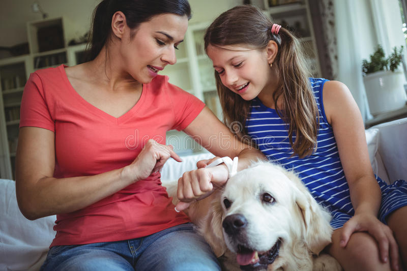 Mother and daughter sitting with pet dog and checking the smart watch royalty free stock images
